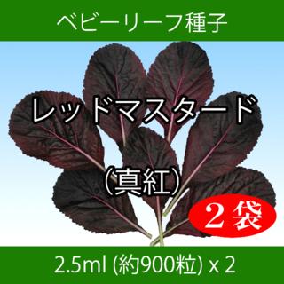 ベビーリーフ種子 B-48 レッドマスタード(真紅) 2.5ml x 2袋(野菜)