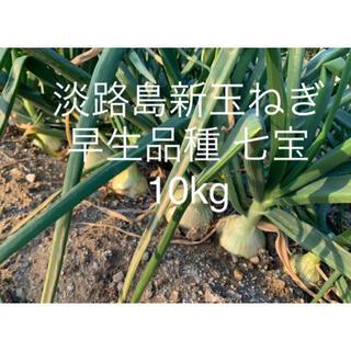 兵庫県 淡路島産 令和3年 新玉ねぎ10kg 早生品種 七宝 たまねぎ40個前後(野菜)