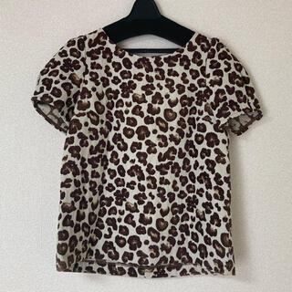 ロペピクニック(Rope' Picnic)のヒョウ柄 半袖(Tシャツ(半袖/袖なし))