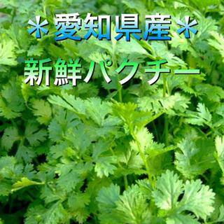 愛知県産 新鮮パクチー(香菜)(野菜)
