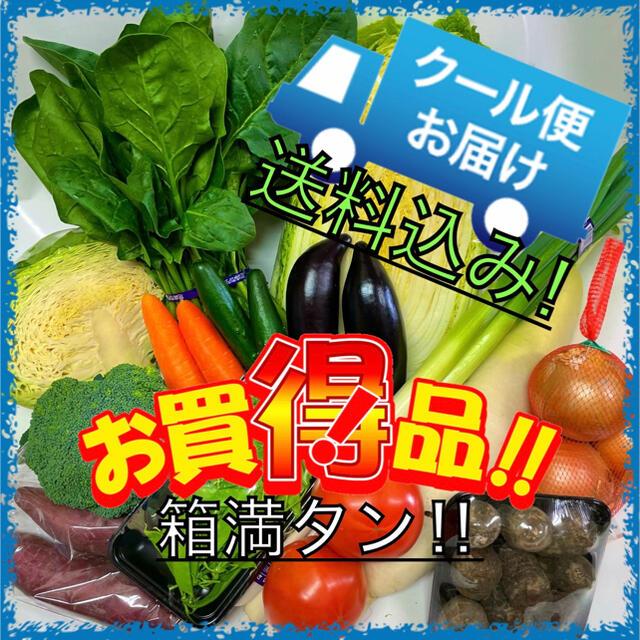クール便配送‼️新鮮野菜詰め合わせ75サイズ箱満タン‼️ 食品/飲料/酒の食品(野菜)の商品写真