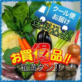 クール便配送‼️新鮮野菜詰め合わせ75サイズ箱満タン‼️