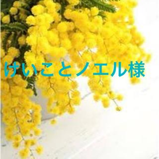 専用ページ(コミック用品)