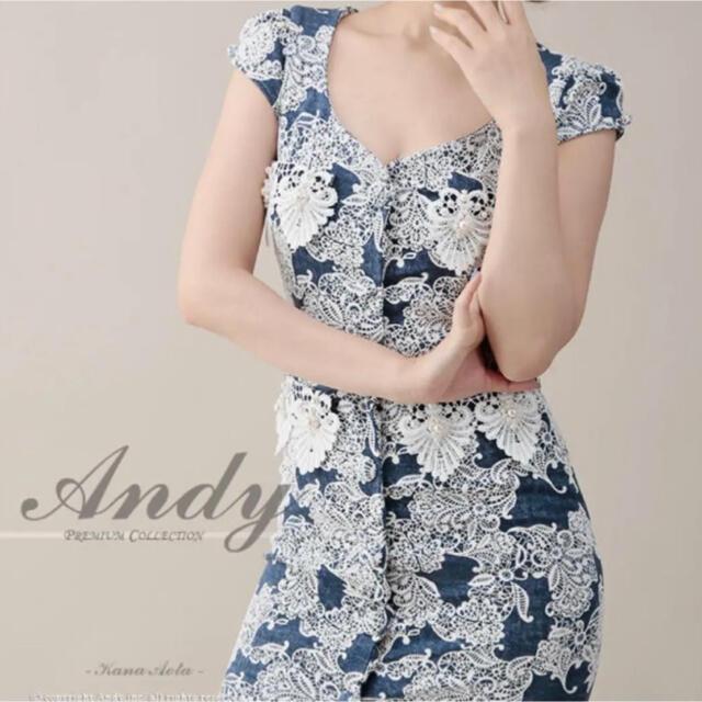 Andy(アンディ)のR様 専用 レディースのフォーマル/ドレス(ナイトドレス)の商品写真