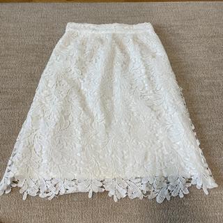 ミューズ(Mew's)の美品 ミューズ レーススカート(ひざ丈スカート)
