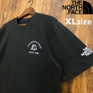 THE NORTH FACE - 【USAモデル】THE NORTH FACE Tシャツ/T018XL