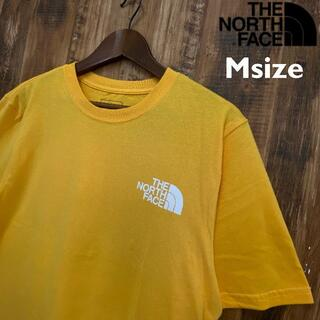 THE NORTH FACE - 【USAモデル】THE NORTH FACE Tシャツ/T004M