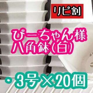 ぴーちゃん様 八角鉢(その他)
