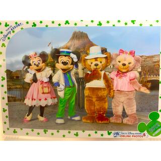 ディズニー(Disney)のディズニースペシャルフォト 2013(写真)