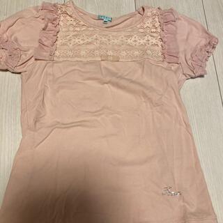 TOCCA - TOCCA Tシャツ130