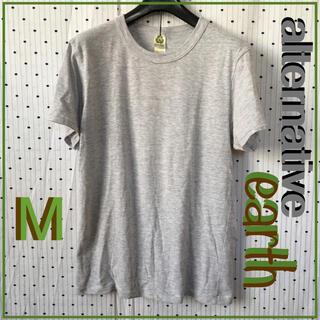 オルタナティブ(ALTERNATIVE)のalternative オルタネイティブUS限定earthアース TシャツM(Tシャツ(半袖/袖なし))