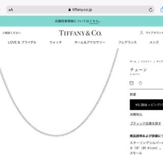 Tiffany & Co. - 新品 Tiffany スターリングシルバー SILVER チェーン