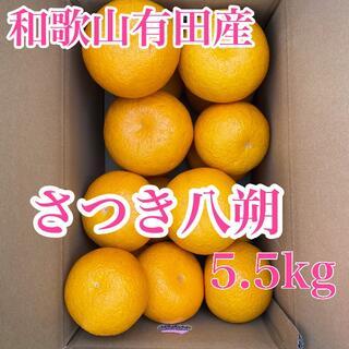 和歌山有田産 さつき八朔 5.5kg