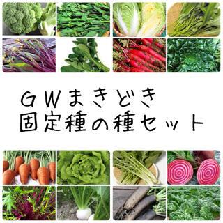 ★伝統野菜★GWまきどき固定種の種セット(野菜)