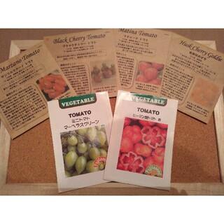 カラフルトマトの種 8種類 たねの森(野菜)
