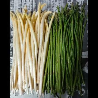 (ちま様専用)佐賀県産極細ホワイト&グリーンアスパラ1.8キロ(訳あり)(野菜)