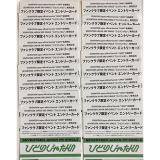 セブンティーン(SEVENTEEN)のSEVENTEEN セブチ 「ひとりじゃない」 CARAT盤 エントリーカード(アイドルグッズ)