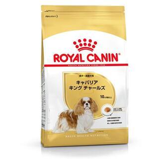 ロイヤルカナン BHN キャバリア 成犬・高齢犬用 1.5kg X3(ペットフード)