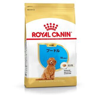 ロイヤルカナン BHN プードル 子犬用 1.5kg X3(ペットフード)