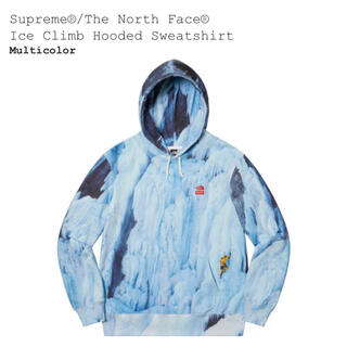 Supreme - 【M】Supreme The North Face Hooded