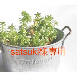 satsuki 様専用(その他)