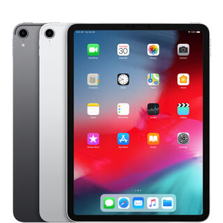 Apple - 【Apple】iPad Pro 11inch Wi-Fi + Cellular