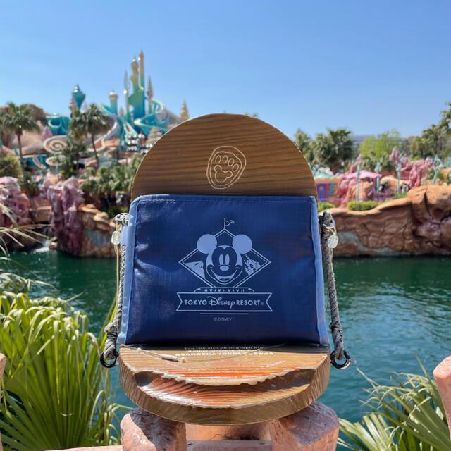 Disney(ディズニー)の新発売⭐︎ディズニーNEWエコバッグ・ショッピングバッグ⭐︎新品未使用品♬ レディースのバッグ(エコバッグ)の商品写真