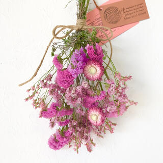 香り立つ無農薬 ピンクスワッグ スターチス へリクリサリウム(ドライフラワー)