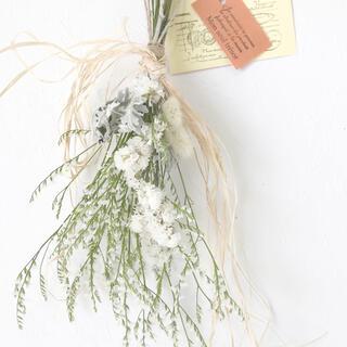 香り立つ無農薬  ホワイトスワッグ ラグラス スターチス(ドライフラワー)