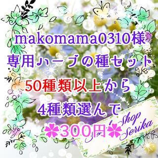 makomama0310様専用 ハーブの種セット 家庭菜園 野菜(その他)