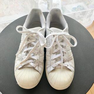 adidas - adidas アディダス スニーカー スーパースター