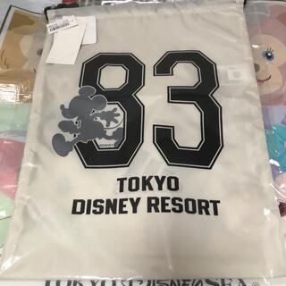 Disney - ディズニー ランド adidas 巾着