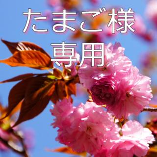 ライトオン(Right-on)の男の子用Tシャツ&7分丈パンツセット 100cm(Tシャツ/カットソー)