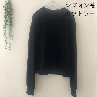 シフォン袖 カットソー ブラウス(カットソー(長袖/七分))