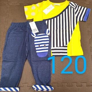 ナルミヤ インターナショナル(NARUMIYA INTERNATIONAL)のbabycheer  新品 120 シマウマ Tシャツ パンツ ベイビーチアー(Tシャツ/カットソー)