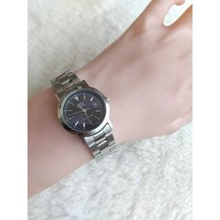 エンリココベリ(ENRICO COVERI)のエンリココベリ腕時計 レディースクォーツ(腕時計)