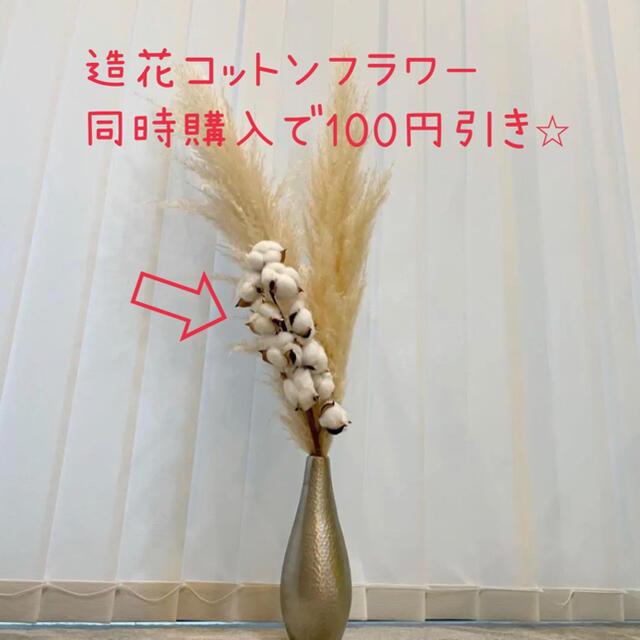 パンパスグラス 大サイズ 2本 白 アイボリー ハンドメイドのフラワー/ガーデン(ドライフラワー)の商品写真