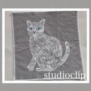 スタディオクリップ(STUDIO CLIP)のスタジオクリップ★コラボタオル★猫デザイン②★松尾ミユキ(タオル/バス用品)