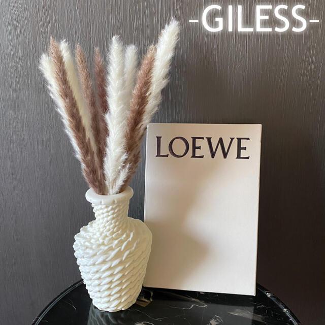 パンパスグラス テールリード ブラウン ホワイト 白 ドライフラワー インテリア ハンドメイドのフラワー/ガーデン(ドライフラワー)の商品写真