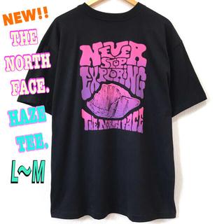 ザノースフェイス(THE NORTH FACE)のユニセックス ♪ ノースフェイス HAZE Tシャツ 黒 L ~ M(Tシャツ/カットソー(半袖/袖なし))