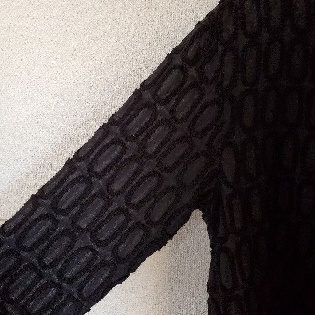 mina perhonen(ミナペルホネン)のミナペルホネン タルト プルオーバー レディースのトップス(カットソー(長袖/七分))の商品写真
