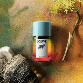 LOEWE - ロエベ パウラズイビザ オードトワレ 50ml LOEWE 香水