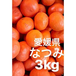 愛媛県 なつみ 3kg(フルーツ)