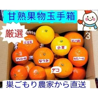本日の厳選❗果物玉手箱7種♥お手軽に味比べ♥巣ごもり農家雪だるまから(フルーツ)
