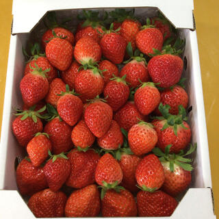 香川県産品さぬき姫箱込みサイズバラ1キロ(フルーツ)