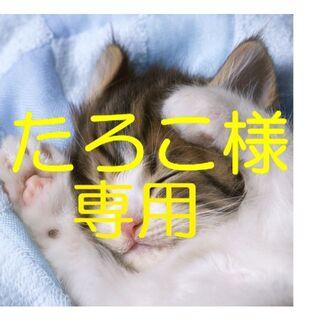 トウシバ(東芝)の東芝 T554 ノートパソコン i5 8GB 新品SSD480GB カメラ BD(ノートPC)