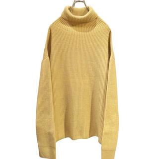 エドウィナホール(Edwina Hoerl)の【※着画あり※】 Edwina Horl Turtleneck knit(ニット/セーター)