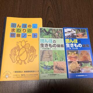田んぼの生き物図鑑(絵本/児童書)