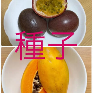 パッションフルーツとフルーツパパイヤの種各20粒(その他)