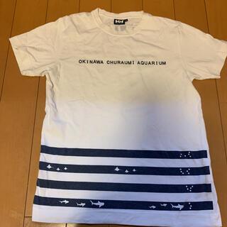 ヘリーハンセン(HELLY HANSEN)のヘリーハンセン 沖縄美ら海水族館限定 Tシャツ(Tシャツ/カットソー(半袖/袖なし))